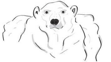 Olav the Polar Bear